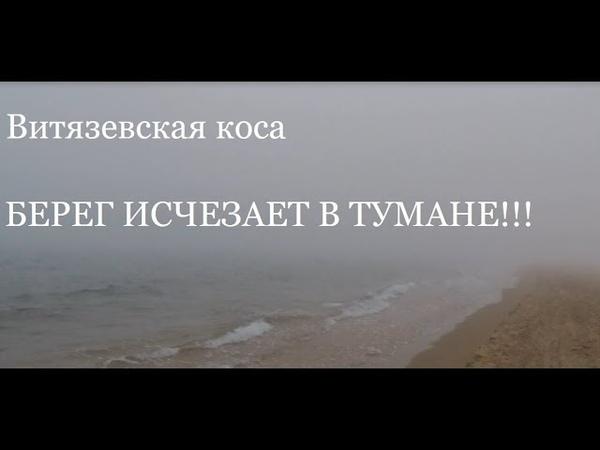 Анапа. Витязевская коса исчезла в тумане. Зайцы прячутся за белой пеленой.