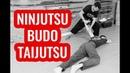 Ninjutsu Budo Taijutsu Combate Armado e Desarmado