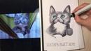 Рисуем кота спиртовыми маркерами copic - copic markers drawing - cat