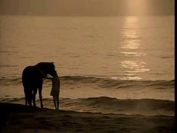 Pat Metheny - Longest Summer ( 1992 ) - The Black Stallion (1979) video clip 2011
