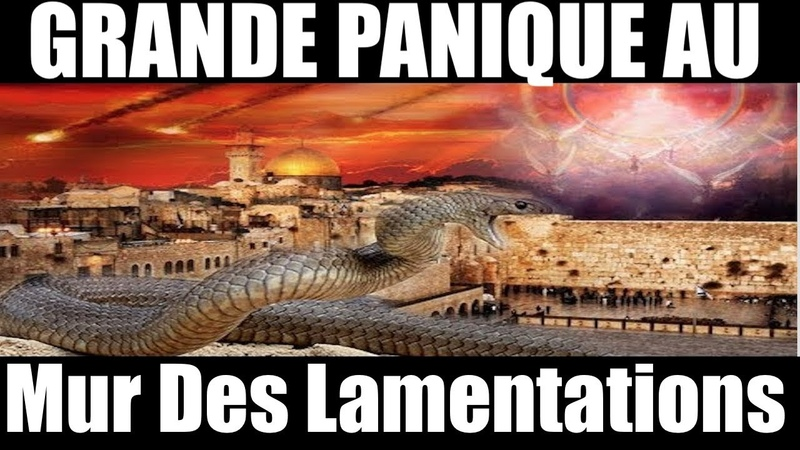 PANIQUE EN ISRAËL⚠️Un serpent sort du Mur des Lamentations en pleine prière~Signe de l'Antéchrist