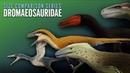 Dromaeosaurids . Dinosaurs size comparison. ¨Raptors¨ Paleoart