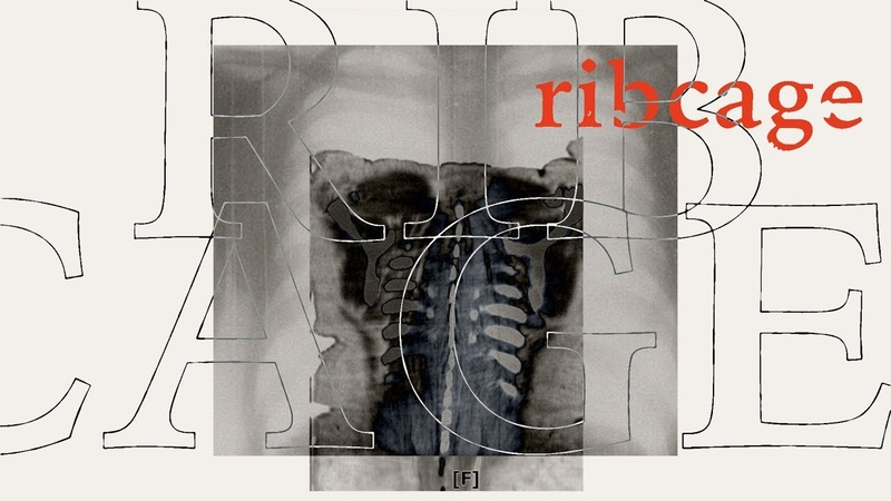 Plested Ribcage Official Lyric Video