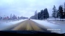 Олень на дороге в Кубинке, московская область.