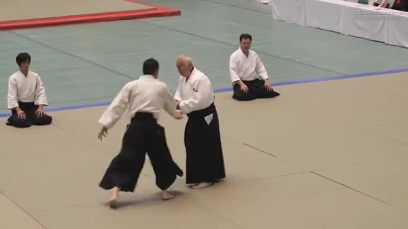 Powerful Aikido Isoyama Hiroshi - 56th All Japan Aikido Demonstration 2018.mp4