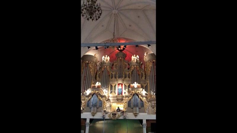 «Carmina Burana» в Кафедральном соборе