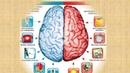 Презентация по курсу Скорочтение. Центр интеллектуального и творческого развития SELMA.
