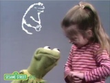 kermit loses all hope in humanity