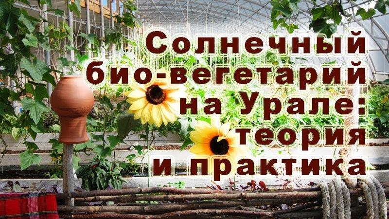 Солнечный био-вегетарий на Урале: теория и практика