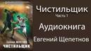 Евгений Щепетнов - Чистильщик. 1 книга из 2. Часть 1. Аудиокнига