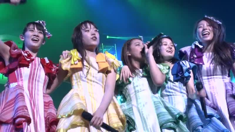 Team Syachihoko - Syachi Mode 2018 THE HALL 2018.02.03@Aichi Nippon Tokushu Togyo Shimin Kaikan Forest Hall