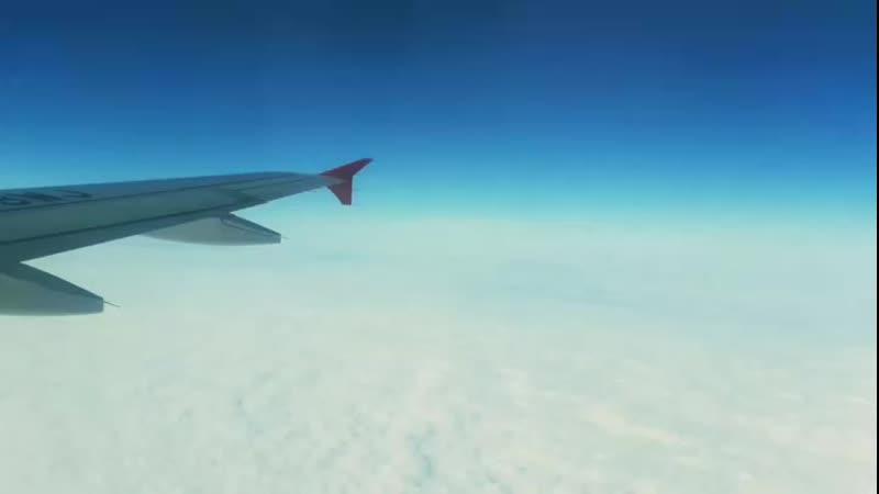 Одеяло облаков😍Утренняя красота полета❤Как я хочу в кабину пилота...Какие там шикарные виды!🔥