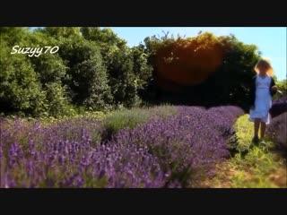 Giovanni marradi - michelle (lavender) мишель (лаванда)
