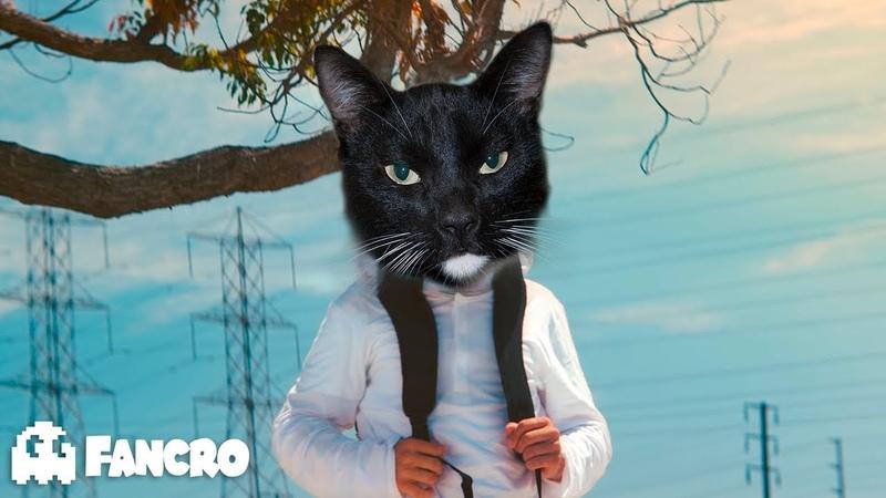 Marshmello - Alone - Cover Tom el gato