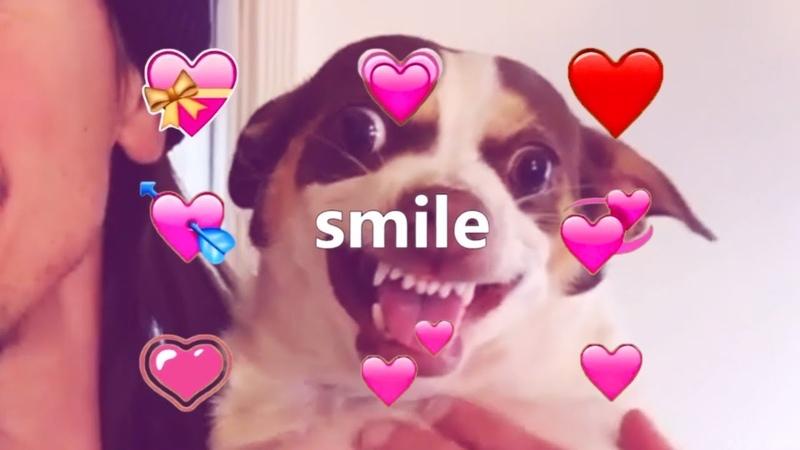 Mr. Bubz Is So Precious When He Smiles