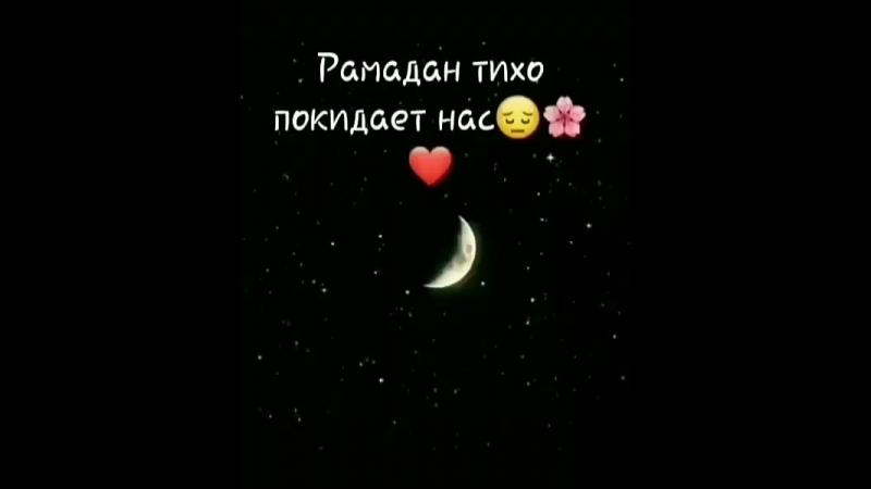 Sabr_terpi_Bj3tbOnA2Mu.mp4