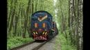 ТЭМ2 2021 в лесу с грузовым поездом на перегоне пост 2 км Заводская Лыткаринского ППЖТ