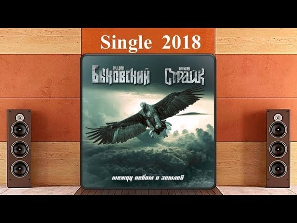 Быковский Страйк Между небом и землей 2018 Heavy Metal