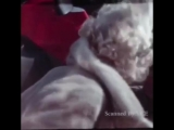 Very Rare Colour footage Of Marilyn Monroe - Some Like It Hot Promotion Tour 1959
