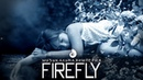 Cephei - Firefly   Цефей - Светлячок