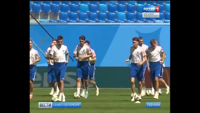 Сборная России в Петербурге провела тренировку перед матчем с Египтом россия1 россия24 vestispb вестиспб vesti spbnewsЧМ