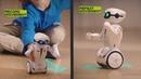 Introducing Silverlit Robot MacroBot