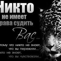 Анкета Сергей Толстошеин