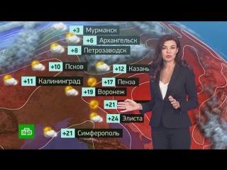 Утренний прогноз погоды на 8 октября