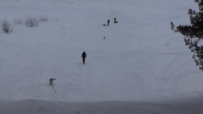 00047 17 марта 2019г Катаемся с Медвежьей горы Балезино Удмуртия