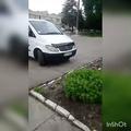 vitamin_14k video