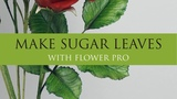 How to Make Sugar Leaves Easy For Roses With Flower Pro l Sugar Flowers