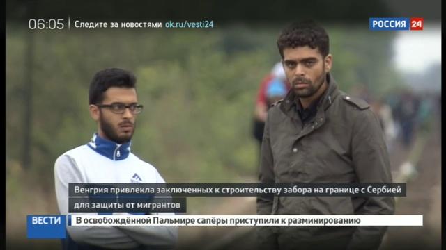 Новости на Россия 24 • Власти Венгрии приняли решение о возведении дополнительного умного забора от нелегалов