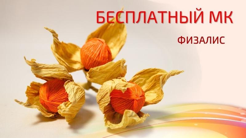 Бесплатный мастер-класс Физалис, свит-дизайн. Мастер Наталья Дроздова.