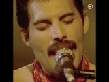 Фредди Меркьюри: Король рок-музыки