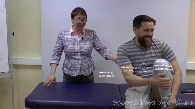 Миофасциальные цепи Анонс проф Васильева Л Ф