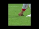 Как трогательно😌 Защитник сборной Испании Жерар Пике на футбольном поле в Казани спасает маленькую птичку🕊