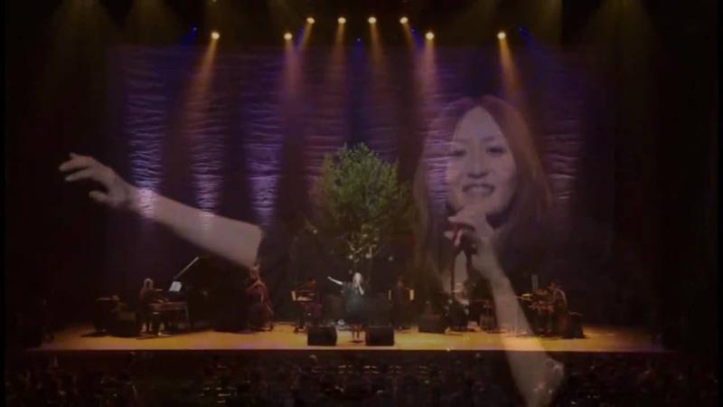 KOKIA / ROAD TO GLORY【OTO NO TABI BITO 27】