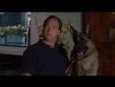 К-9 III Частные детективы / K-9 P.I. (2002) BDRip 720p [Feokino]