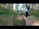 XiaoYing_Video_1536489240274.mp4