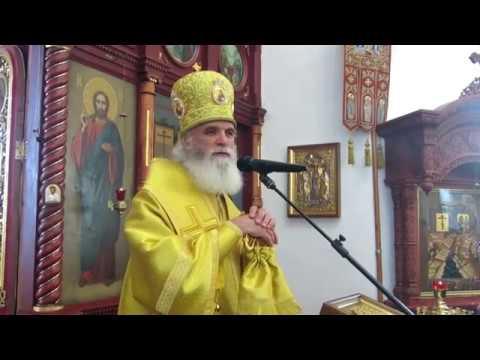 Епископ Адриан проповедь в день памяти прп Саввы Сторожевского