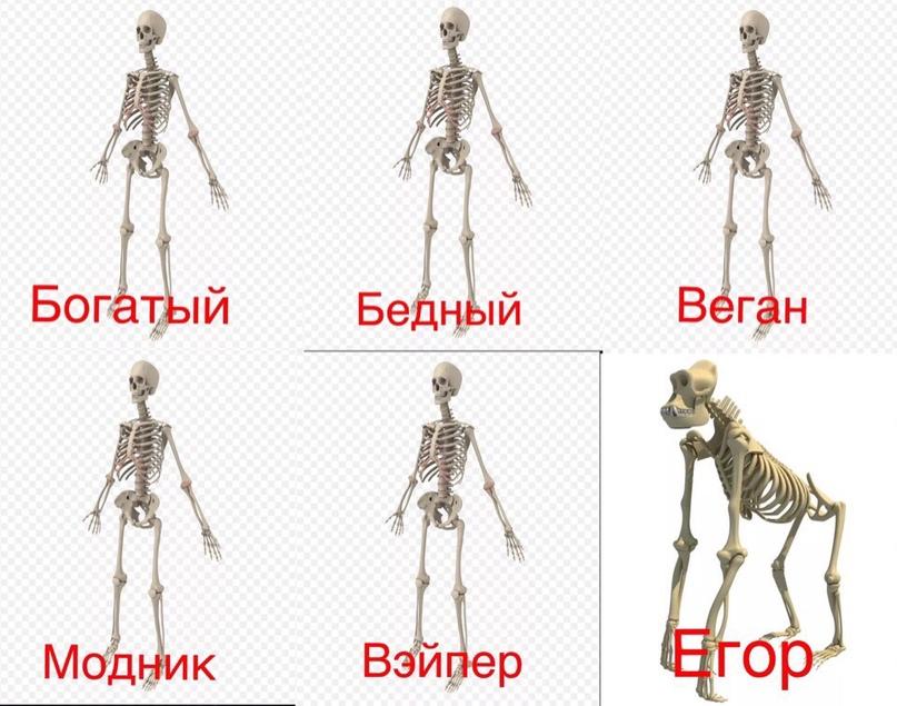 Егор Митрофанов | Рыбинск