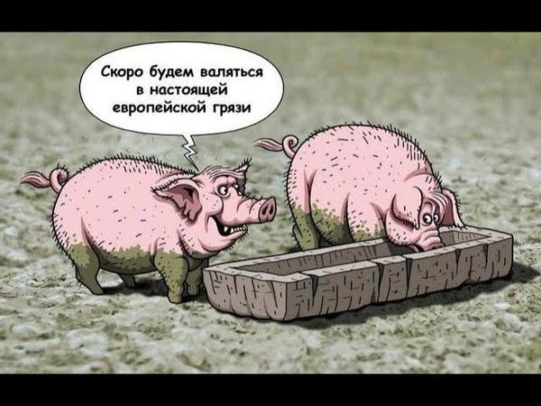 Дульский про Полтаву.