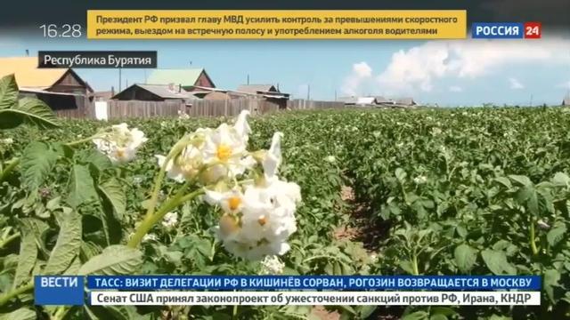 Новости на Россия 24 • В Бурятии смягчат законы, охраняющие Байкал