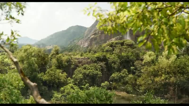 Книга джунглей.Простые радости.mp4