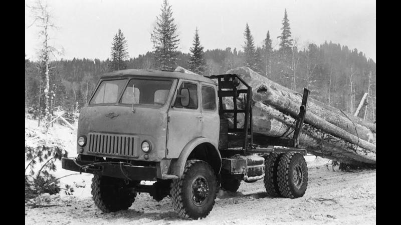 Вывозка хлыстов волоком лесовозами МАЗ-509П и 501Б. Мачтовая погрузка хлыстов. 1971 год.