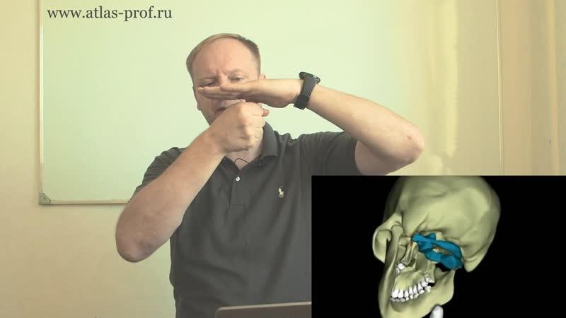 Болит шея, заклинило шею, не поворачивается шея