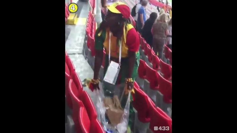 Пока швейцарские фанаты централизованно обоссывали забор, болельщики из Сенегала централизованно убирали стадион после матча.
