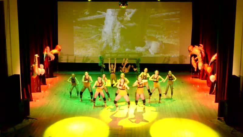 День рождения Active Dance - 5 лет. Африка.Джунгли