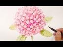 Paint a realistic hydrangea in watercolor 수국 수채화