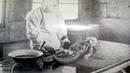 Дело врачей нацистов Живая история